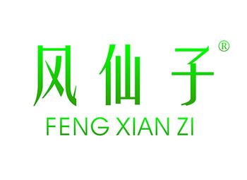 风仙子 FENGXIANZI