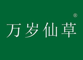 5-Y95752 万岁仙草