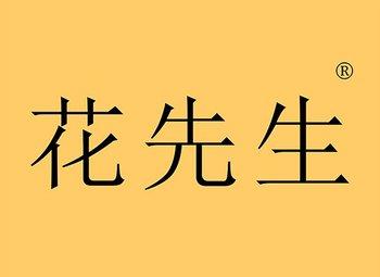 39-Y98304 花先生