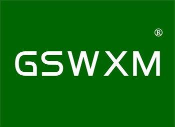 11-Y98990 GSWXM