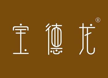 26-Y100656 宝德龙