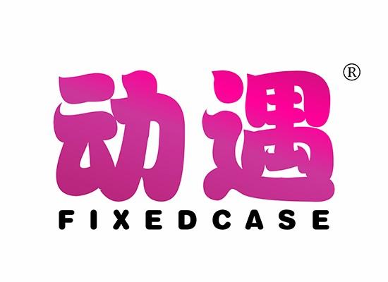 動遇 FIXEDCASE