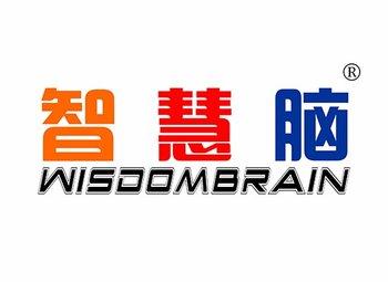 9-A747 智慧脑 WISDOMBRAIN