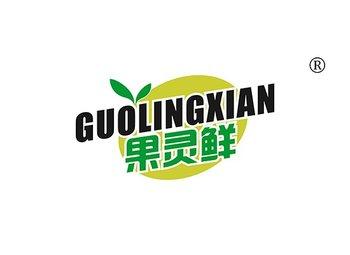 31-A204 果灵鲜,GUOLINGXIAN
