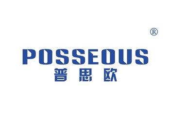 11-A705 普思欧,POSSEOUS