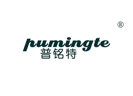 普铭特 PUMINGTE