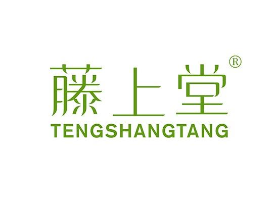 藤上堂 TENGSHANGTANG