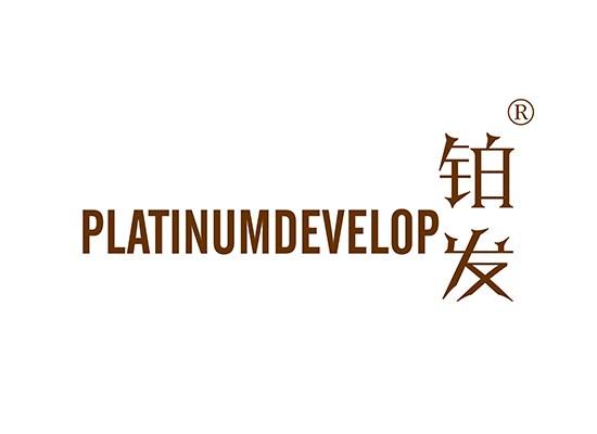 鉑發 PLATINUMDEVELOP
