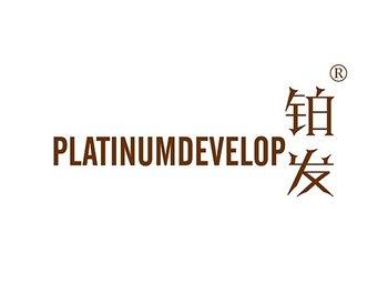 铂发 PLATINUMDEVELOP