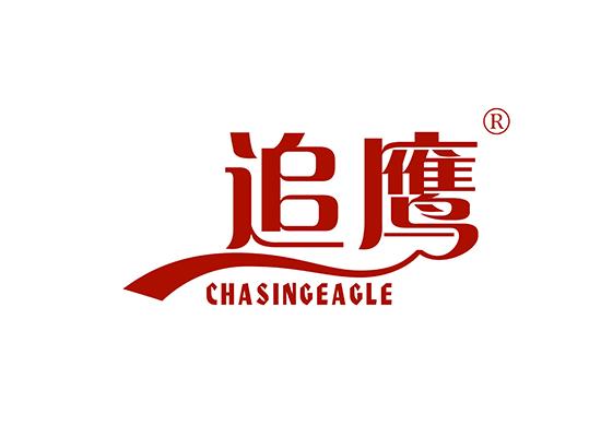 追鷹 CHASINGEAGLE