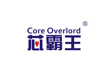 9-A1493 芯霸王,CORE OVERLORD