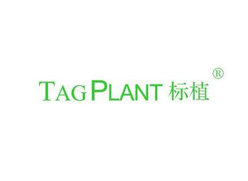 标植 TAG PLANT