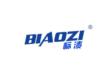 标渍 BIAOZI
