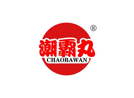 潮霸丸,CHAOBAWAN
