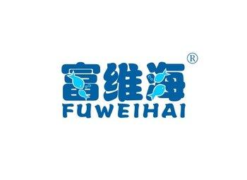 富维海 FUWEIHAI