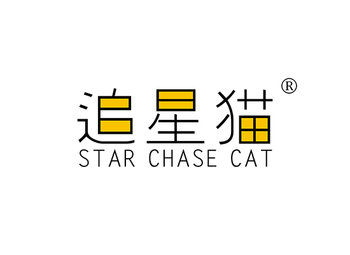 9-A1678 追星猫,STAR CHASE CAT
