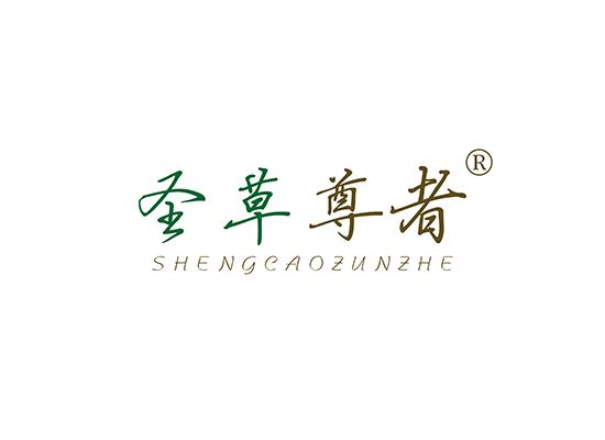 圣草尊者 SHENGCAOZUNZHE