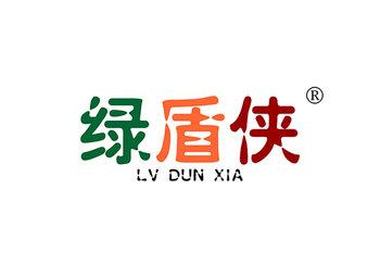 10-A621 绿盾侠,LVDUNXIA