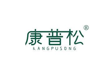 康普松 KANGPUSONG