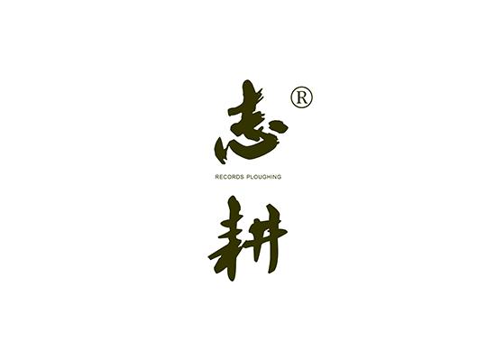 志耕 RECORDS PLOUGHING