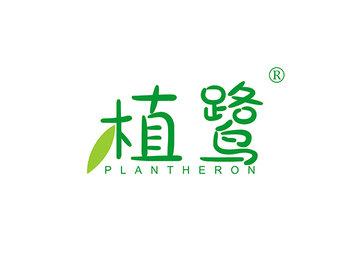 植鹭 PLANT HERON