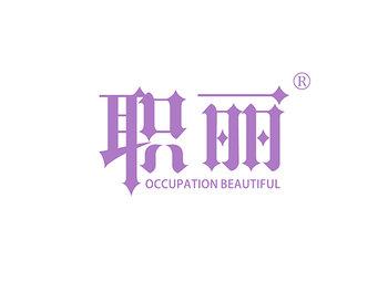 职丽 OCCUPATION BEAUTIFUL