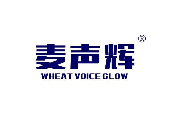 麦声辉 WHEAT VOICE GLOW