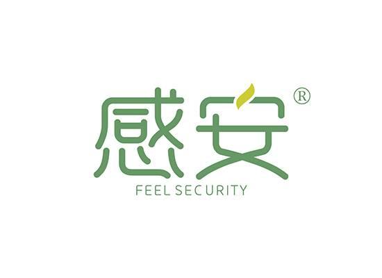 感安,FEEL SECURITY