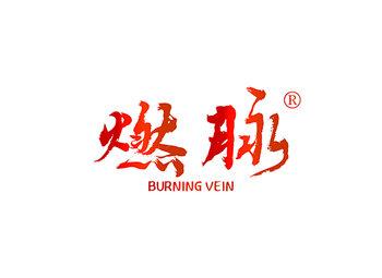燃脉 BURNING VEIN