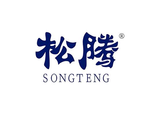 松騰 SONGTENG