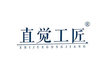 直觉工匠 ZHIJUEGONGJIANG