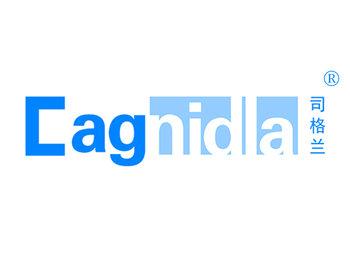 11-A464 司格兰CAGNIDLA