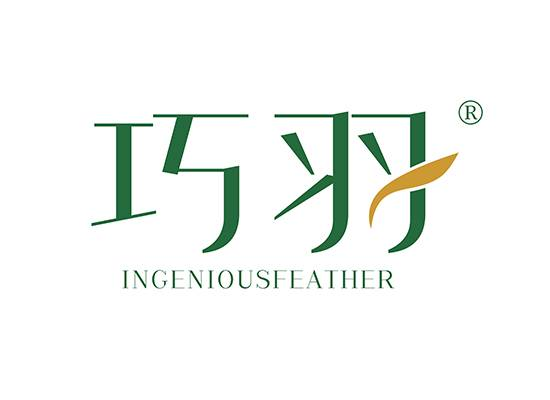 巧羽 INGENIOUSFEATHER