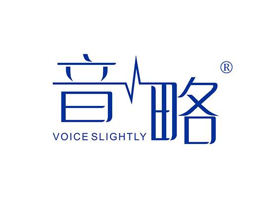 音略 VOICE SLIGHTLY