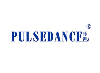 脉舞 PULSE DANCE