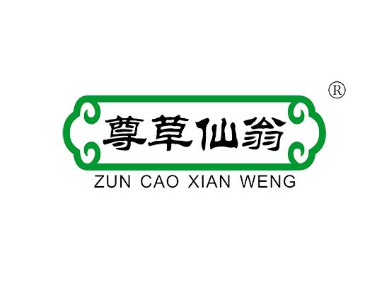 尊草仙翁 ZUNCAOXIANWENG