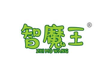 智魔王 ZHIMOWANG
