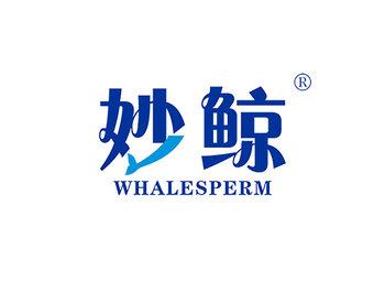 妙鯨 WHALESPERM