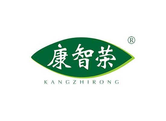 康智荣 KANGZHIRONG