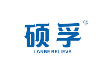 碩孚 LARGE BELIEVE