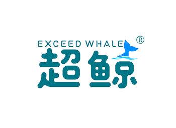 超鲸 EXCEED WHALE