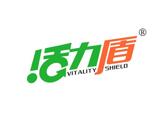 活力盾 VITALITY SHIELD