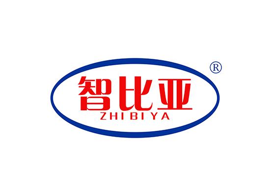 智比亚 ZHIBIYA