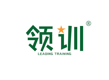 领训 LEADING TRAINING