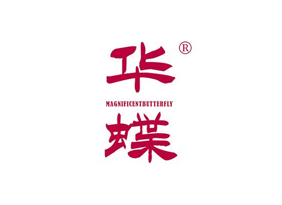 華蝶 MAGNIFICENT BUTTERFLY