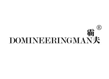 霸夫 DOMINEERINGMAN