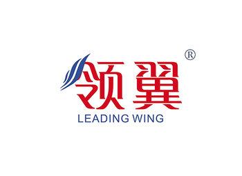 领翼 LEADING WING