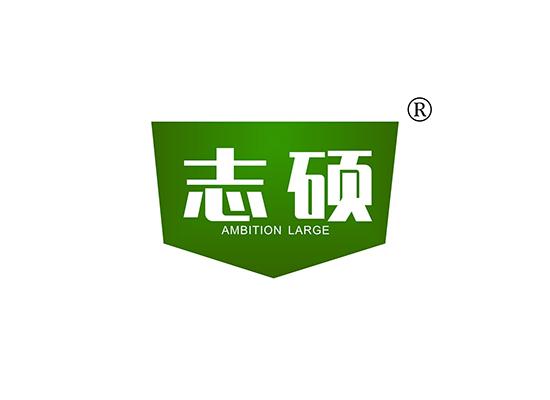 志碩  AMBITION LARGE