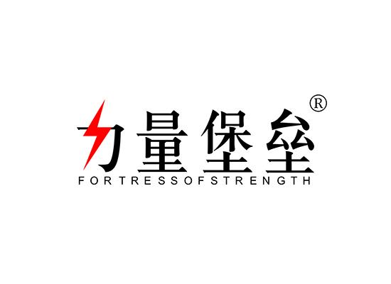 力量堡垒 FORTRESS OF STRENGTH