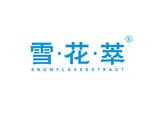 雪·花·萃  SNOWFLAKE EXTRACT